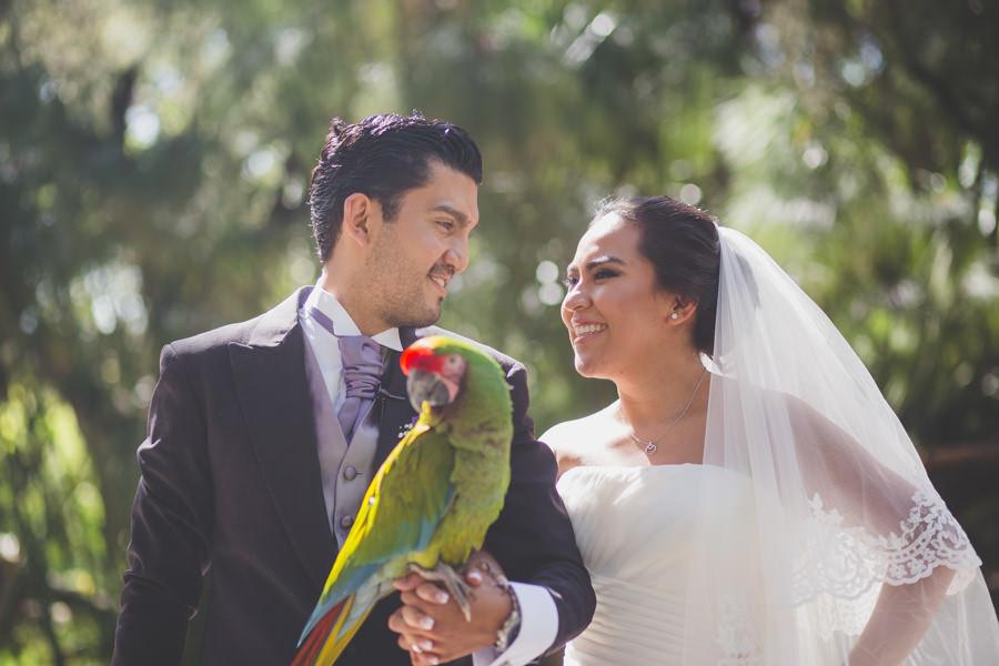 boda en africam safari  martha-carlos-jorge-pastrana-46